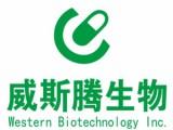 重庆威斯腾生物医药科技有限责任公司